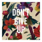 pigmag_Washed-Out-Dont-Give-Up1